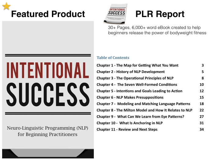 nlp-plr-report-mr